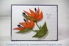 Bird of Paradise card by Janet Yates using SU Bird Builder punch