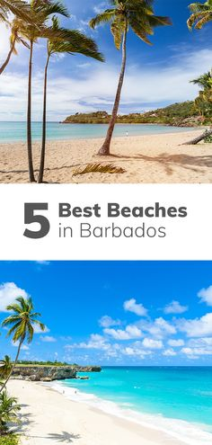 Your Guide to the 5 Best Beaches in Barbados