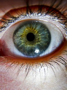 Eye macro - 2009 by Chris_Moody, via Flickr