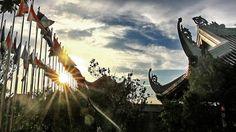 Đức Phật luôn luôn nhấn mạnh vào tầm quan trọng của một cuộc sống hòa bình. Người luôn luôn hướng dẫn cho con người ta hướng tới sự hòa bình, yên lành. Đọc thêm những lời Phật dạy tại đây: http://baihoccuocsong.net/nghe-thuat-song