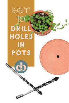 All plants need proper drainage! It's so important for the health of the roots and the soil. Learn how to drill drainage holes in just about anything with these easy to follow steps! #drainageholes #houseplants #plantcare #drillholes #drainagesystem Plant Crafts, Diy Crafts, House Plant Care, Good House, Plant Needs, All Plants, Plant Decor, Houseplants, Drill