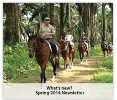 If you want horse riding in singapore, Then you can visit our website to take information for horse riding services. Riderslodge is known for famous horse riding.