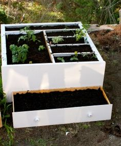 clever raised bed garden in an old dresser