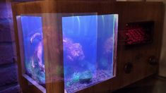 Nano shrimp tank radio edition ;-) nano tank dla krewetek - YouTube