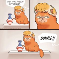 """ Bad Trump! Bad."" That's an insult to cats, they're far more intelligent than he is, and can actually learn something."
