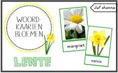 Thema lente: woordkaarten bloemen