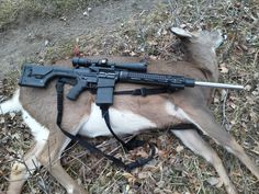 ar-15 hunting rifle | would get black instead of FDE, but that's just me.