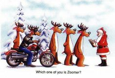 Santa and the new reindeer.  #christmas #motorcycle #funny