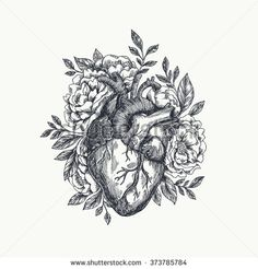 Anatomical heart with flowers. Anatomical heart with flowers. Stylo Art, Herz Tattoo, Heart Sketch, Tattoo Hals, Neck Tattoos, Tatoos, Wing Tattoos, Heart Art, Piercing Tattoo