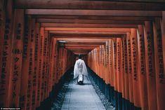Kyoto photographer Takashi Yasui chronicles everyday life in Japan. Beautiful Places In Japan, Japon Tokyo, Kyoto Japan, Fushimi Inari Taisha, Japan Street, Visit Japan, Japanese Streets, Street Photographers, Japanese Culture