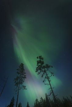 Explore Janne.'s photos on Flickr. Janne. has uploaded 3069 photos to Flickr.