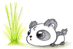 cute panda drawings - Google keresés