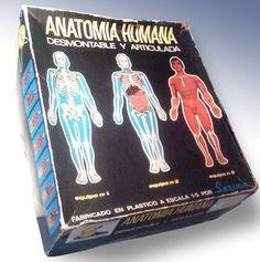 El esqueleto humano, me lo regalaron cuando pasé el sarampión