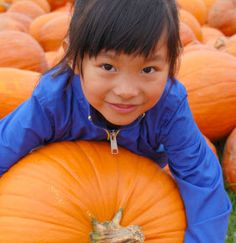 11 places to get your fill of harvest fun - ParentMap