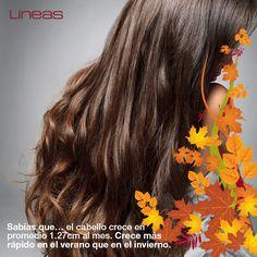 Sabías que... #Lineas #outfit #moda #tendencias #2014 #ropa #prendas #estilo #primavera #outfit #cabello