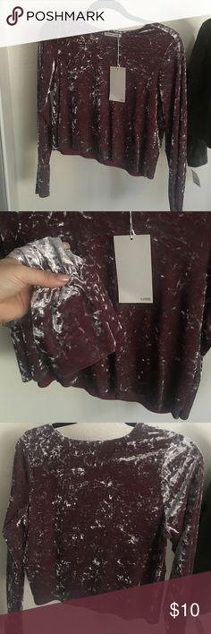 Velvet Crop Top Zara new velvet crop top in pretty mauve color. Bell sleeves. Zara Tops Crop Tops