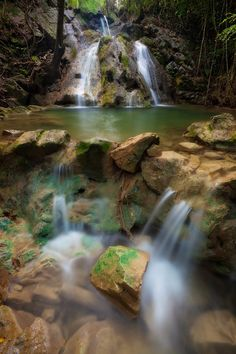 Explore the rain forest on St. Croix, US Virgin Islands....will be there in 3 weeks!