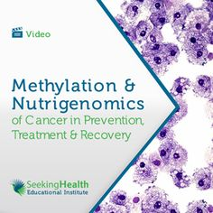 Methylation and Nutrigenomics of Cancer in Prevention, Treatment and Recovery.