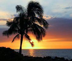 Jamaica, island life