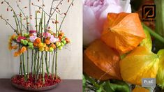 A little bit of wilderness - create your own autumn - Physalis and Rose hips. With a surpising combination of garden roses.