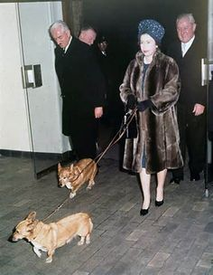 The Queen with her dogs.