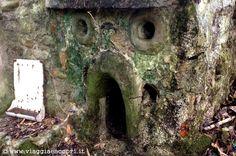 Riserva della Bessa, particolare della casa abbandonata http://www.viaggiaescopri.it/avventure-nella-bessa-borriana-zubiena