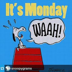 Snoopy and Monday! Happy Monday Quotes, Monday Morning Quotes, Monday Humor, It's Monday, Funny Monday, Manic Monday, Morning Texts, Wednesday, Snoopy Pictures