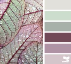 Ideas For Bathroom Colors Palette Design Seeds Design Seeds, Pantone, Palette Design, Colour Pallette, Colour Palette Autumn, Bedroom Colour Schemes Green, Purple Color Combinations, Complimentary Color Scheme, Color Schemes Colour Palettes