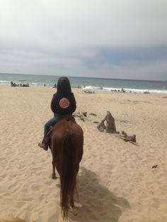 Santa Cruz California Horses, Salinas River State Beach Riding, Local Horses #HorseColicSymptomsFree http://www.loveyour.horse