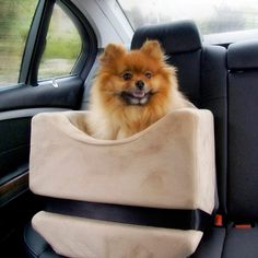 Companion Car Seats -Gotta look out for our pets too!!
