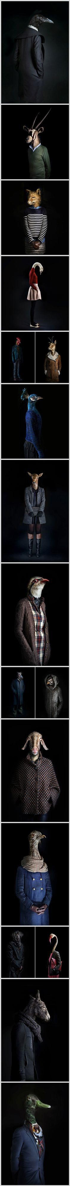 """Madrid-based advertising and industrial photographer Miguel Vallinas presents his whimsical photo series, titled """"Second Skins"""", where various animals take up a role that's completely new to them. Dressed in fashionable clothes, each of them poses as a typical human model would, and it appears the their outfits match their personalities as a true second skin."""