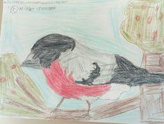 Punatulkku on lintuja ne laulavat talven, konsertti ja syövät pihlajamarjoja, ne nauttivat tunnelmaa talven aikoihin niin kauneimmilla