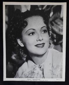 Vintage Black and White Publicity Photo of Olivia de Havilland | 21 Vintage Street