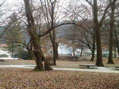 Brodzany - Park 7