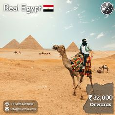 Travel A New Experience That Can Transport You Out Of Your Everyday Routine To Create Memories With The Ones You Love Avalon Waterways, Crystal Cruises, P&o Cruises, Luxor Temple, City By The Sea, Holland America Line, Visit Egypt, Valley Of The Kings, Norwegian Cruise Line