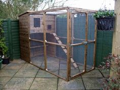 cat runs   CAT RUN AND CAT CAT HOUSE TO KEEP YOUR CAT SAFE AND SECURE