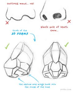 How to Draw a Nose – Anatomy and Structure The septum and wings hook into the inside of the nose. That's important to avoid drawing a cartoony nose. Here are two common mistakes. The first is just a outline of the nose. The second is focused Drawing Techniques, Drawing Tutorials, Drawing Tips, Art Tutorials, Anatomy Drawing, Anatomy Art, Anatomy Reference, Drawing Reference, Nose Drawing