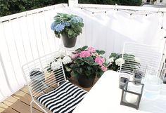 oh what a room: Balkon mit blühenden Hortensien und weißem Windschutz #pflanzenfreude