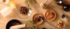 漢方について|フィロソフィー|健康・美を応援する漢方・漢方薬の薬日本堂