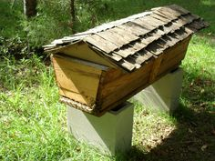Top bar hives might protect bees better during the winter.