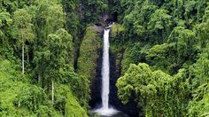 Valley in Upolu Island Samoa Places To See, Lush, Travel Inspiration, The Good Place, Travel Destinations, National Parks, World, Outdoor, Nature
