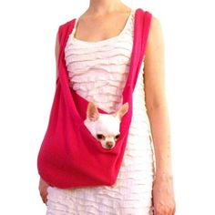 Heart Pup: Dog Wearing In Style