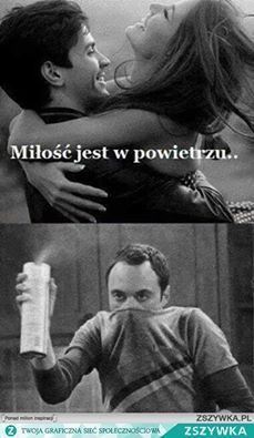 Wtf Funny, Funny Cute, Polish Memes, Funny Mems, I Hate People, Sad Day, Reaction Pictures, Big Bang Theory, Really Funny