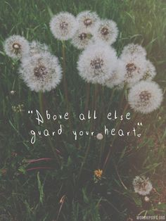 """"""" Above all else, guard your heart, for everything you do flows from it. - Proverbs 4:23 """""""