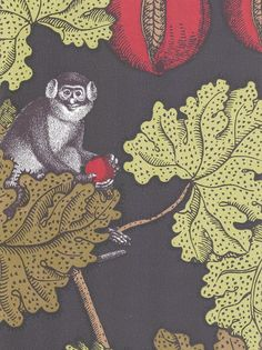 Frutto Proibito Wallpaper A Fornasetti wallpaper depicting monkeys hiding in a pomegranate tree, in tan, green and reds on a charcoal background, Foyer?