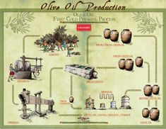 How is Olive Oil produced?