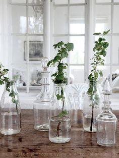 glass vases, flowers, greenery, centerpiece