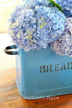 hydrangeas in bread box- I just love the beauty of hydrangeas.