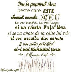 Alba, Quotes, Forget, Bible, Fotografia, Verses, Qoutes, Dating, Quotations