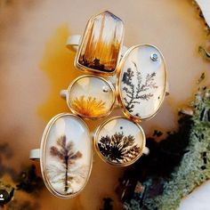 these dendritic agates remind us of little trees and micro landscapes Dendritic Agate, Rutilated Quartz, Moss Agate, Joseph, Decorative Plates, Instagram Posts, Artwork, Agates, Type 3
